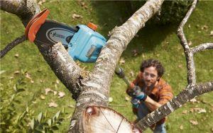 Gardena Baum- und Strauchpflege
